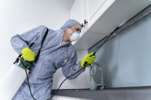 Side View Of Exterminator In Workwear Spraying Pesticide In Kitchen